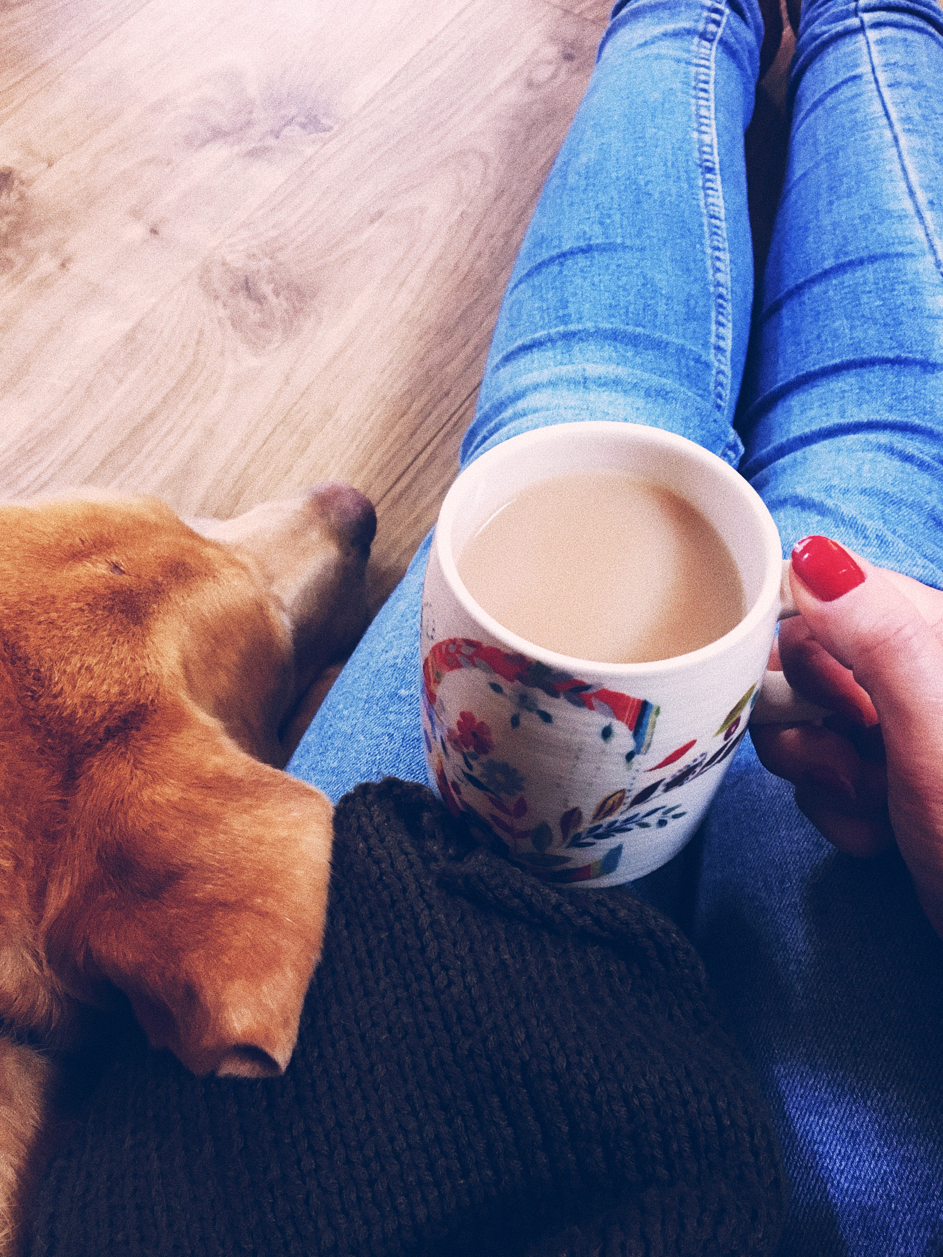 Cosy image of me holding a cup of tea cuddling my dog