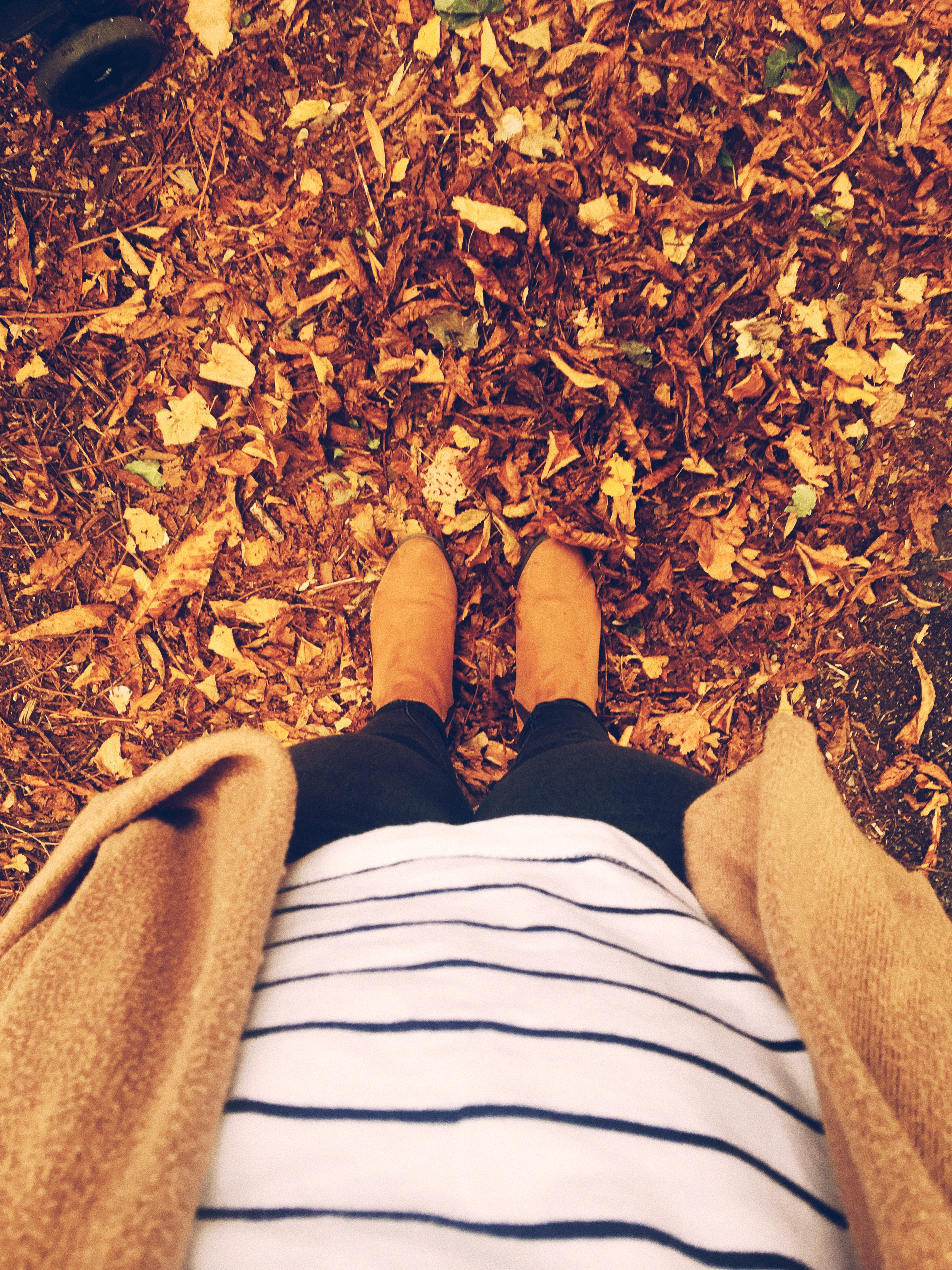 Autumn outfit image standing in autumnal coloured leaves