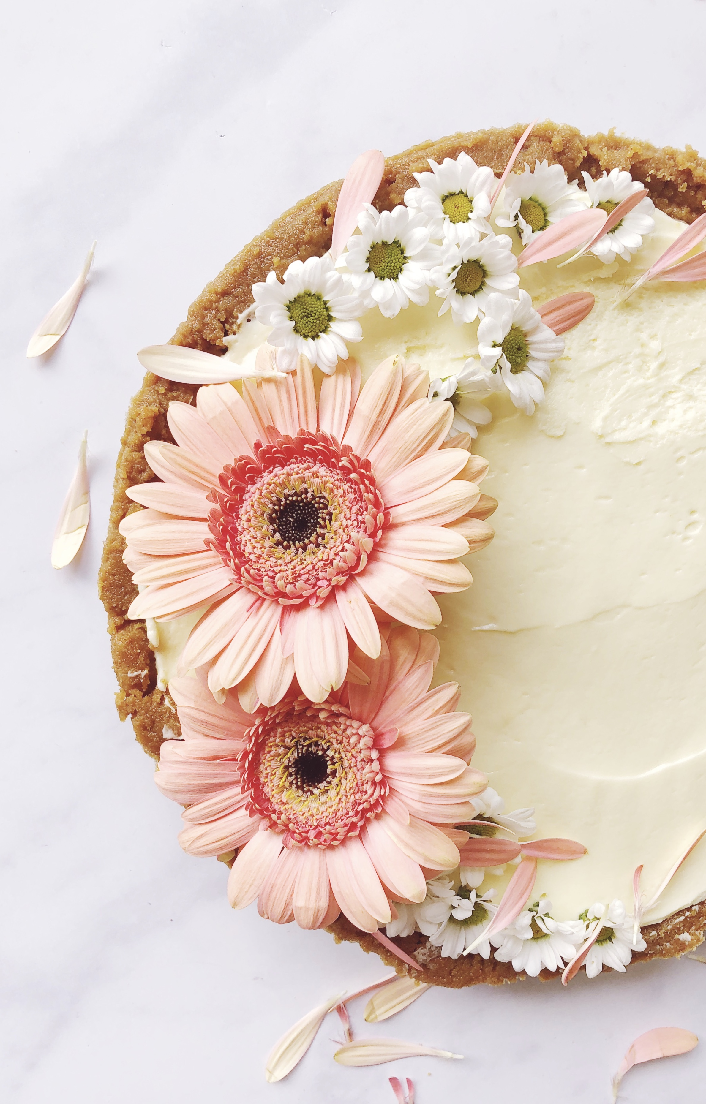 white chocolate and ginger torte